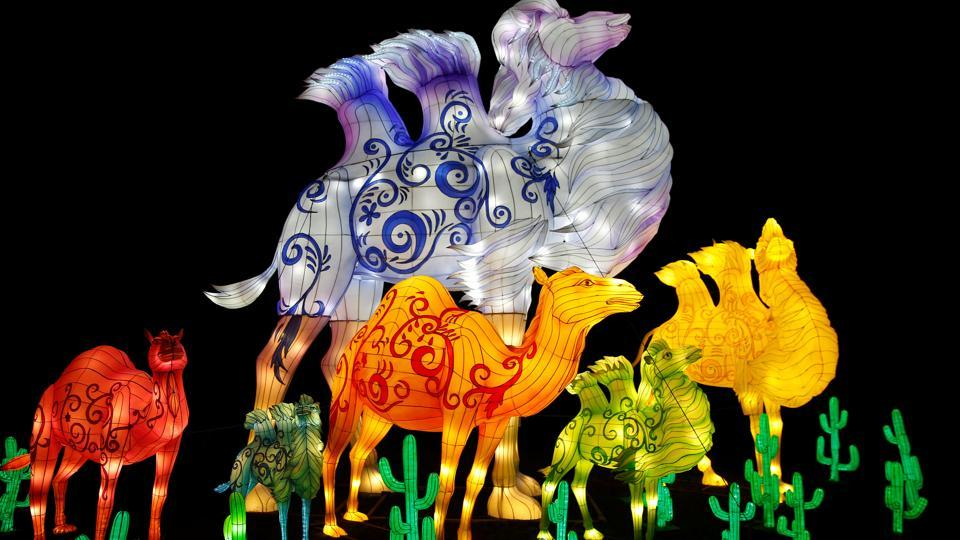 A light display is illuminated during the The Magical Lantern Festival marking the Chinese new year at Chiswick House in London, Britain January 18, 2017.  (Neil Hall / REUTERS)