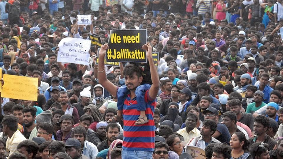 People attend a protest demanding to reverse a Supreme Court ban on the traditional bull-taming contests, known as Jallikattu, at the Marina beach in Chennai.