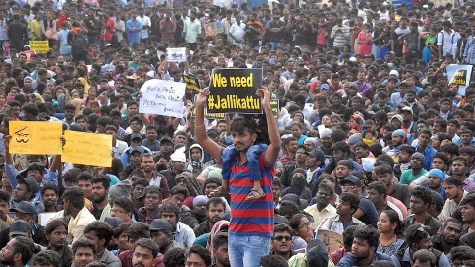 Jallikattu,anti-Hindi protests,Narendra Modi