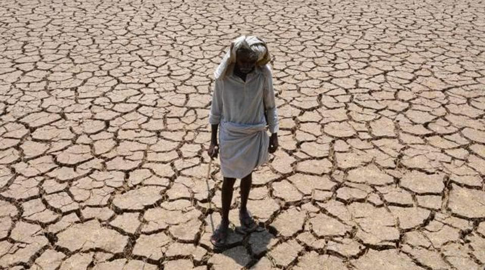 Tamil Nadu received only 168.3 mm of rainfall during the north-east monsoon as against the normal rainfall of 440.4 mm, a deficit of 62 per cent. A central team will study the damage caused to crops and take stock of the drinking water scarcity.
