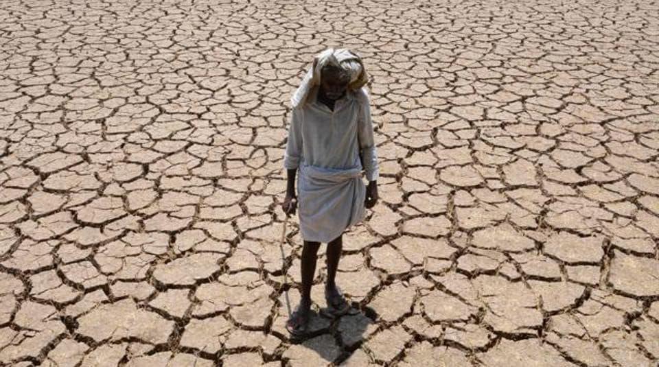 Tamil Nadu,drought,Panneerselvam