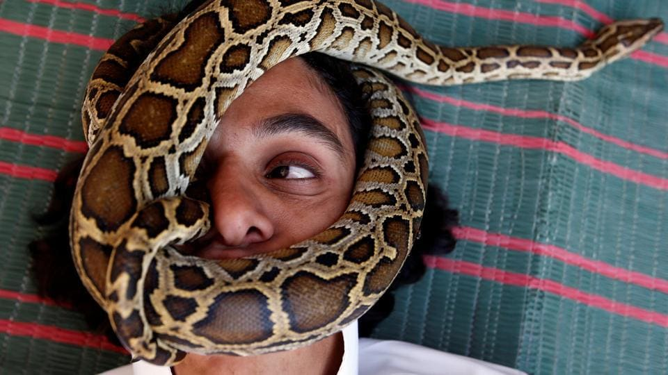 Palestinian man Nabeel Mussa, who keeps scorpions and snakes as a hobby and eats them, has his face surrounded by a snake at his house in Riyadh, Saudi Arabia. (Faisal Al Nasser/REUTERS)