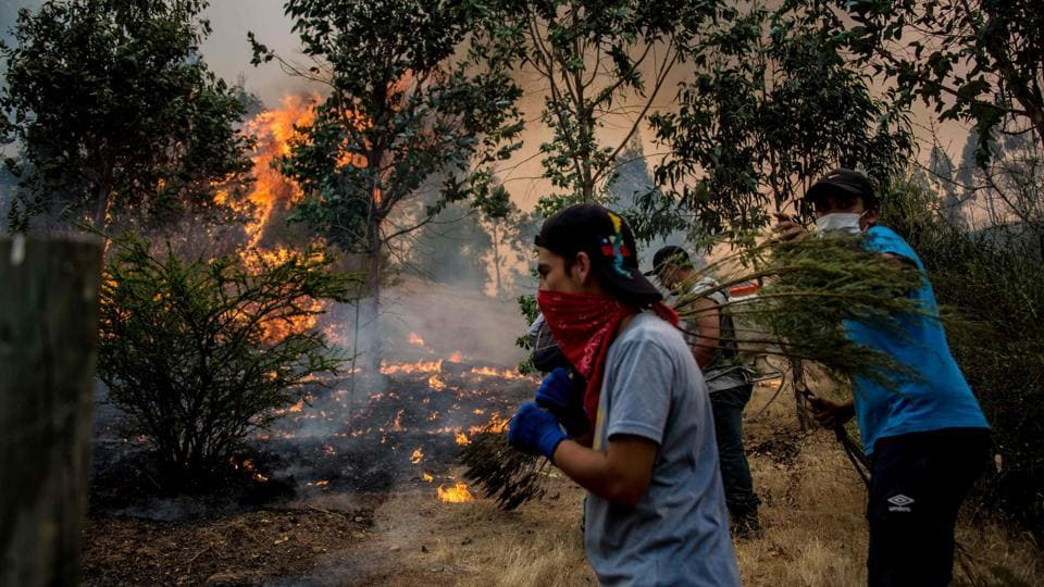 Volunteers help out the firefighters to reduce the fire. Chile's National Forestry Corporation said on Friday that outside assistance was needed. (Martin Bernetti/AFP)