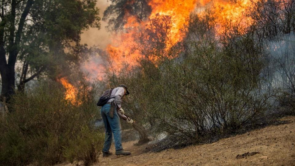By calling a state of catastrophe, military personnel can be deployed to assist in dousing the wildfires. (Martin Bernetti/AFP)