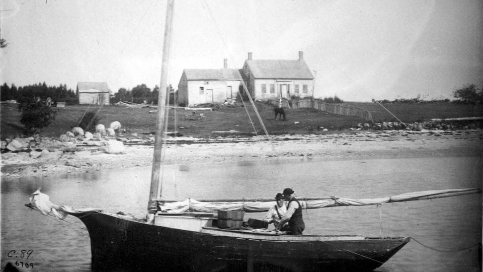 In this 1891 photo released by the National Oceanic and Atmospheric Administration, Penobscot Bay fishermen clean mackerel near their saltwater farm off the Maine coast.