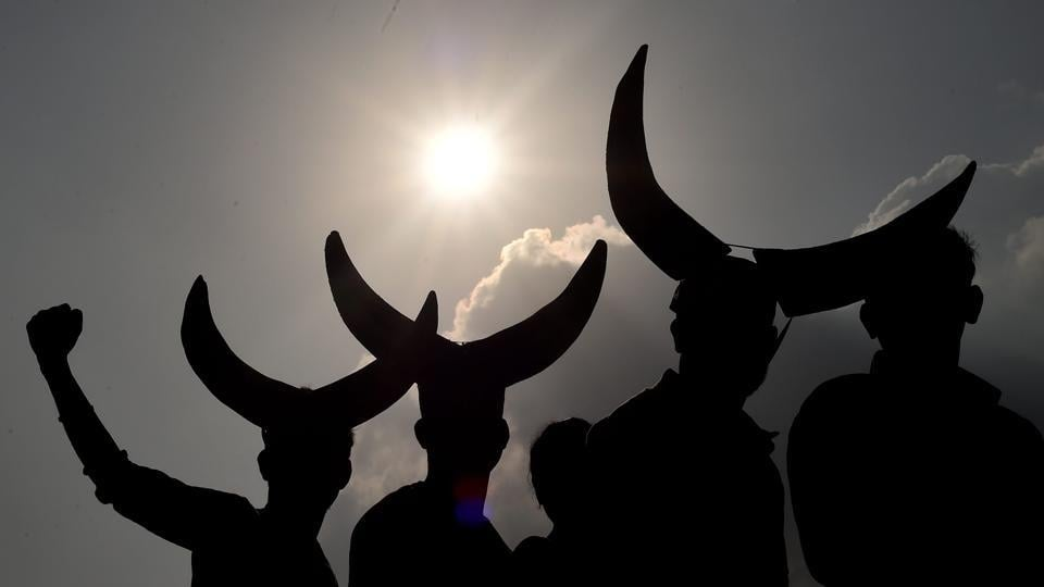 A protest to lift the ban on Jallikattu in Chennai.  Tamil Nadu governor C Vidyasagar Rao's approval for a state government ordinance that circumvents a Supreme Court ban on Jallikattu, a traditional bull-taming sport, appears to have given a licence to communities across the country to seek legal sanction for their own outlawed regional celebrations