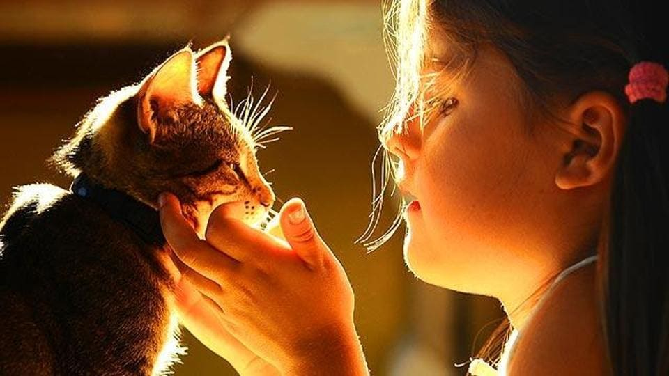 A new study says children get more satisfaction from relationships with their pets than with their siblings.