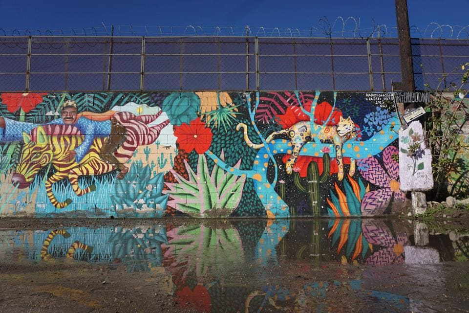 View of a mural painted on the US-Mexico border wall in Tijuana, Mexico. (AFP Photo)