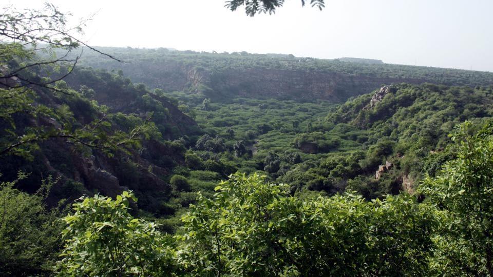 Gurgaon,Aravallis,haryana forest