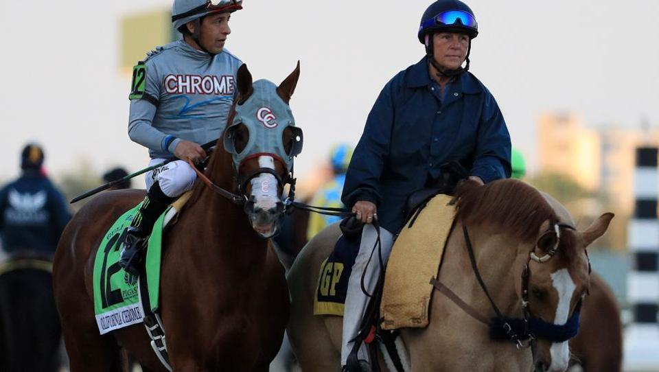 Victor Espinoza atop California Chrome parades prior to the $12 Million Pegasus World Cup Invitational at Gulfstream Park on January 28, 2017 in Hallandale, Florida.  (Mike Ehrmann / AFP)