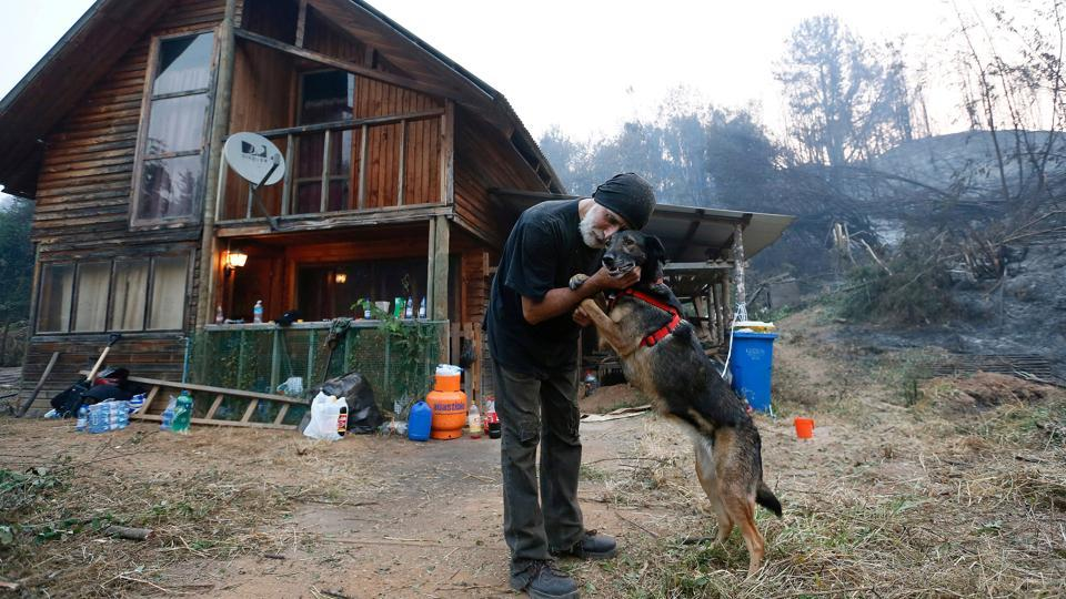 Cristian Gutierrez, a resident of Florida town, caresses his dog in front of his house after wildfires in the country's central-south regions, in Florida, Chile January 28, 2017.  (Rodrigo Garrido / REUTERS)