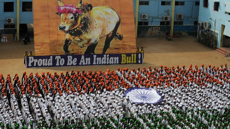 Indian school students form the national flag, alongside a poster supporting the  bull-taming Jallikattu festival, during an event to mark Republic Day in Chennai on January 25, 2017.  (RUN SANKAR / AFP)
