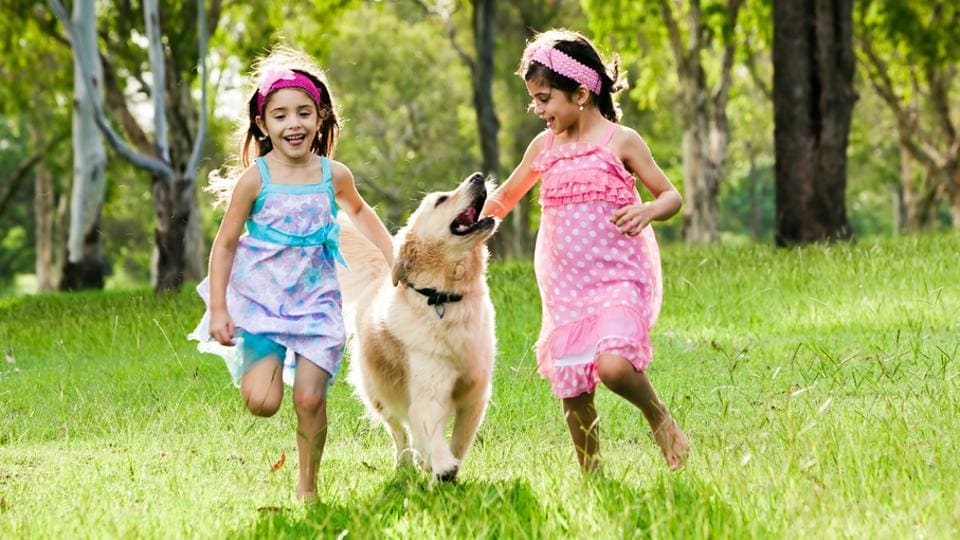 Children reported strong relationships with their pets relative to their siblings, with lower levels of conflict and greater satisfaction.