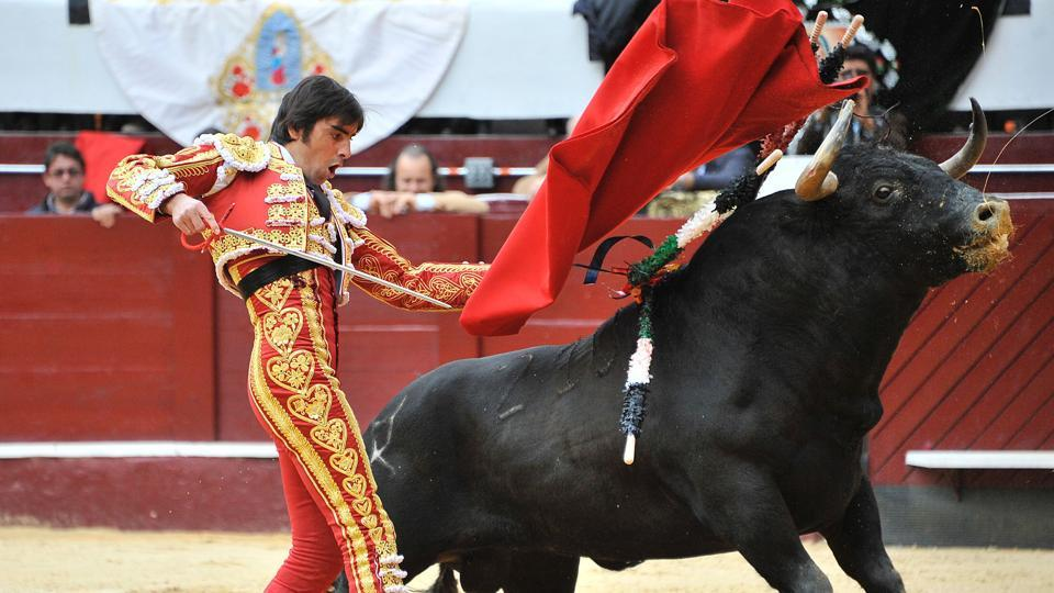 Spanish bullfighter Miguel Angel Perera pierces the bull with a weapon, in Colombia. (GUILLERMO LEGARIA / AFP Photo)