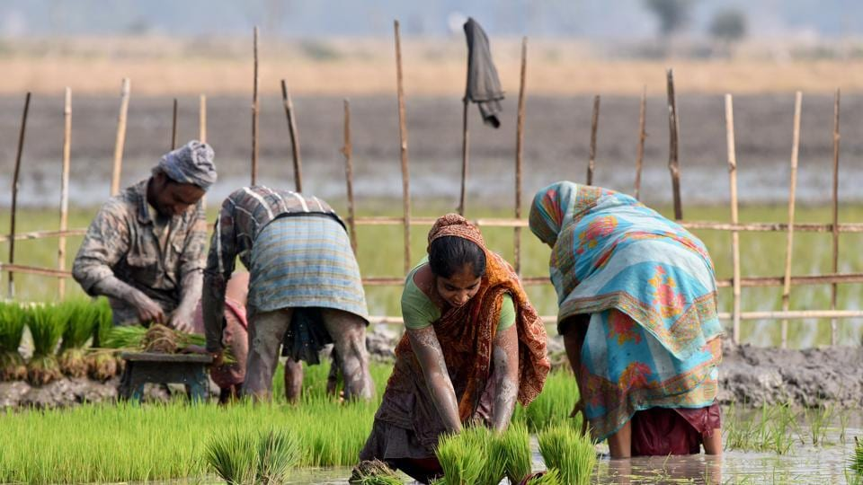 A large number of initiatives have been proposed in the budget. Like in the past year's budget, the government has again stated its commitment to double farm incomes in five years' time