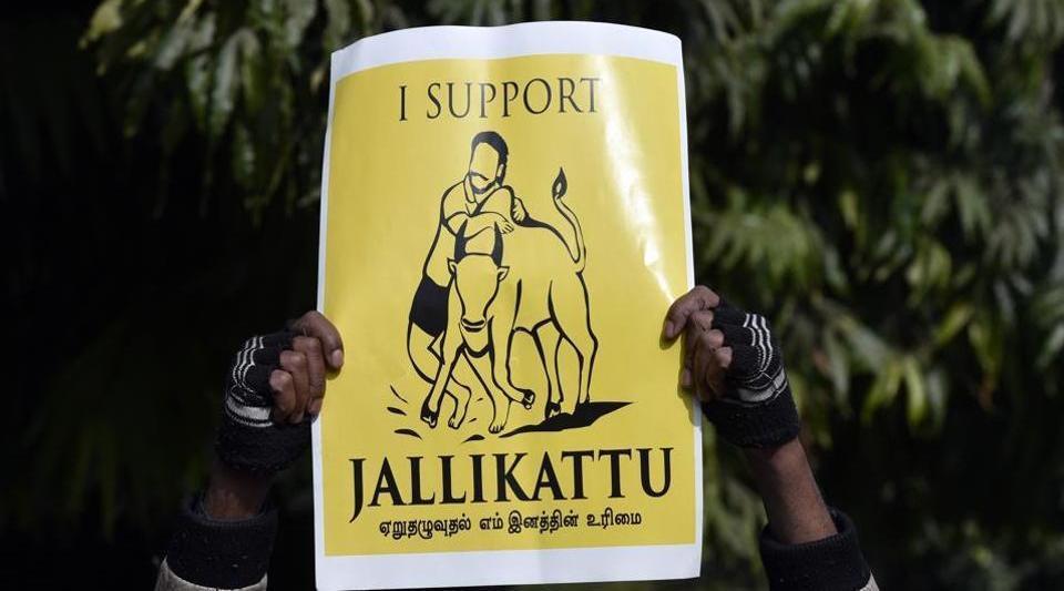 Jallikattu supporters during a protest march against Jallikattu ban at Jantar Mantar in New Delhi