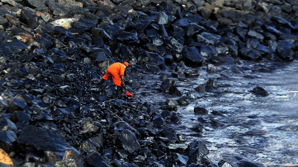 A member of the Pollution Response Team of the Indian Coast Guard collects a sample of the oil spill from boulders at the Ennore coast, in Chennai.