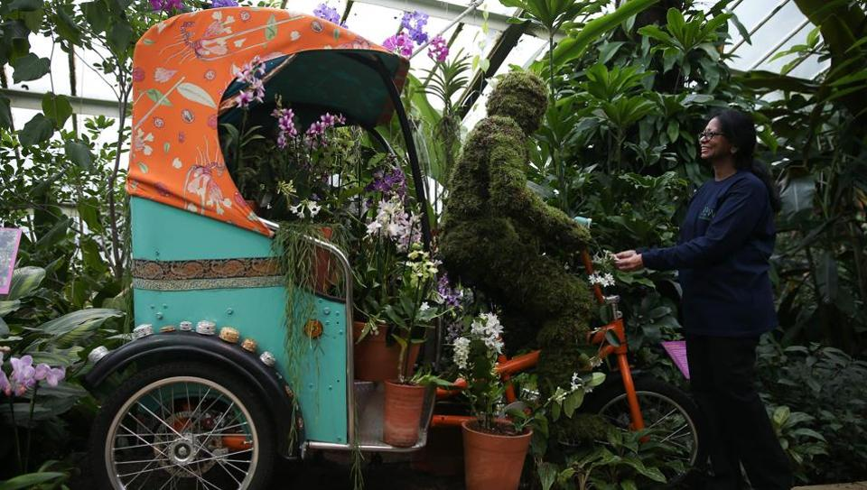 An employee poses next to a rickshaw displaying different kinds of orchids during the Orchid Festival at the Royal Botanic Gardens in Kew, west London. (AFP photo)