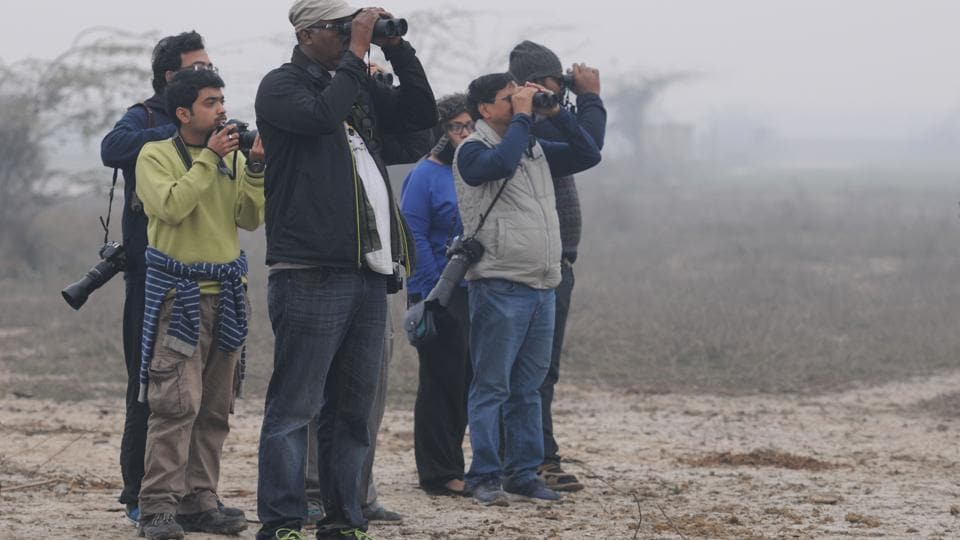 Several groups of birdwatchers flocked a number of locations, including Basai, Sultanpur National Park and Okhla Bird Sanctuary during the event in 2016.