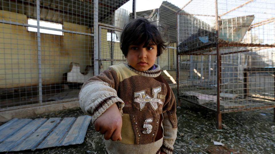 A child shows his hand bit by a monkey at Mosul zoo, Iraq. (REUTERS photo)