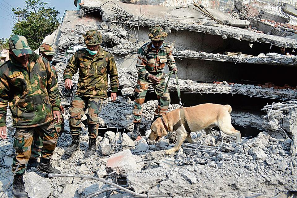 Heroic efforts of the sniffer dogs helped save 12 people trapped in the building debris in Kanpur.