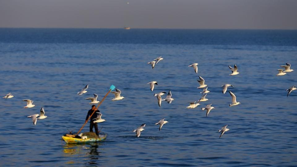Seagulls fly over a Palestinian fisherman in Gaza City.   (MOHAMMED ABED / AFP)