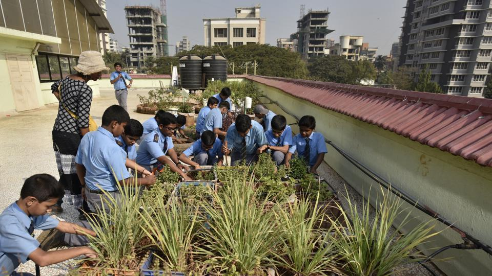 Students of Chembur's Our Lady of Perpetual Succour (OLPS) High School work at their terrace garden.