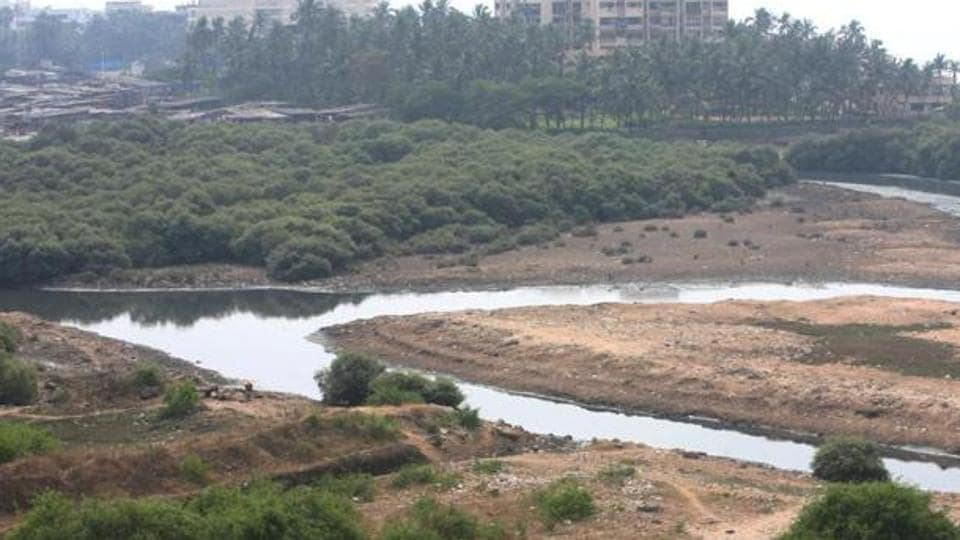 In 2005, the Bombay high court banned the destruction of statewide mangroves and construction within 50m of them