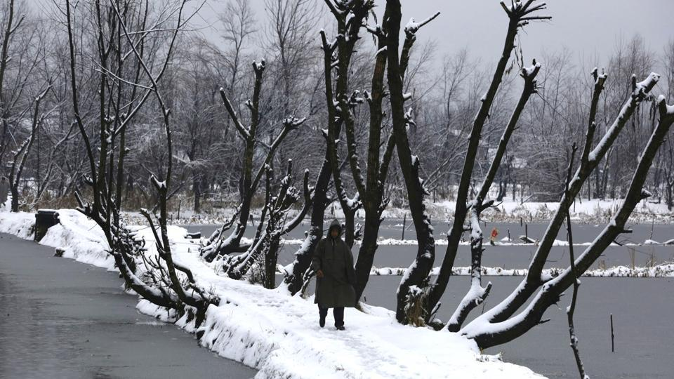 A man walks on a snow covered path on the interiors of Dal Lake in Srinagar.