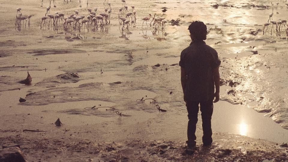 Beyond The Clouds,Shahid Kapoor,Ishaan Khattar