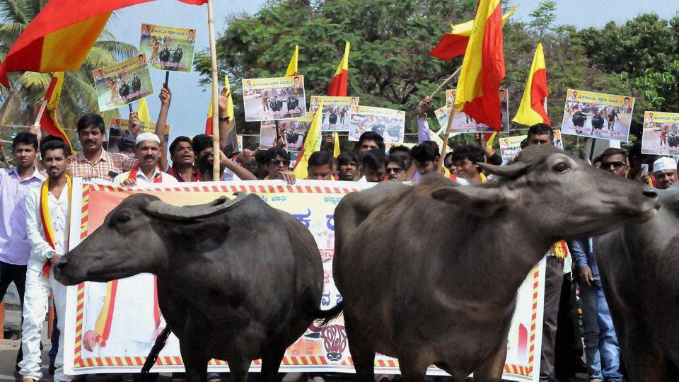Activists protest seeking permission to hold Kambala in Karnataka.