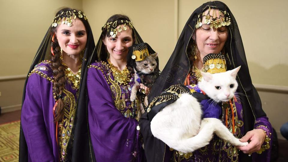 Women with their cats dressed in the fashion of Armenia participate in the World Fashion Presents segment of the 14th Annual New York Pet Fashion Show  (TIMOTHY A. CLARY / AFP)