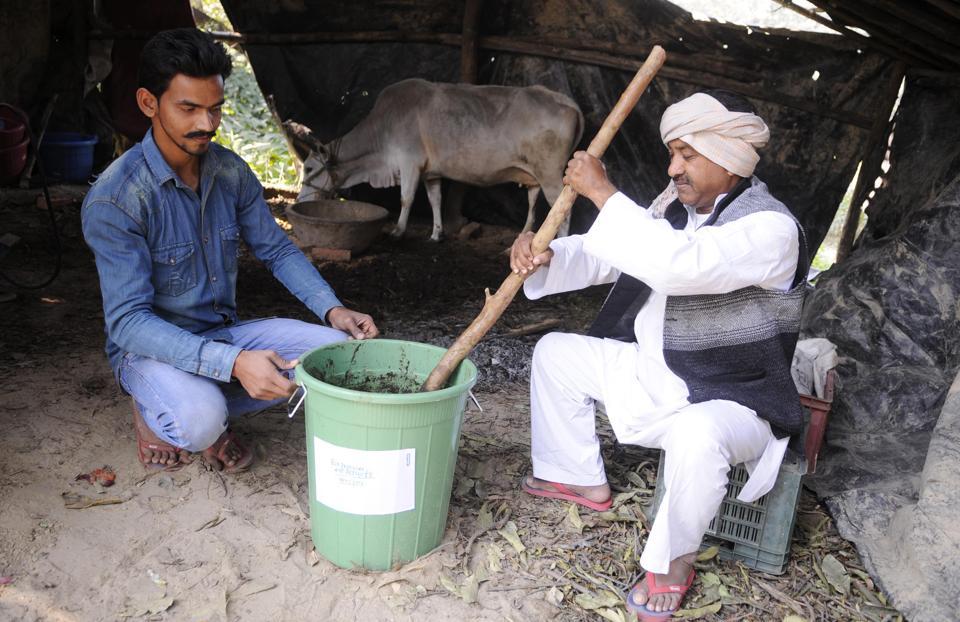 Cow urine,Malihabad mangoes,Swachch Bharat