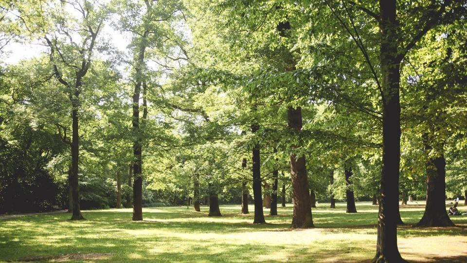 Healthy,Health,Parks