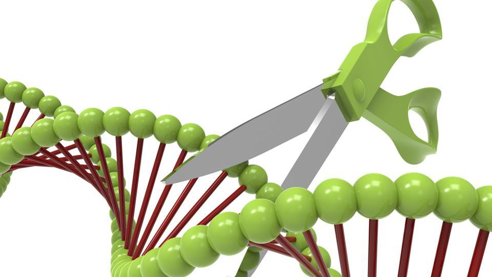 The genome-editing kits target the genome's source material to make permanent changes at the DNA level.