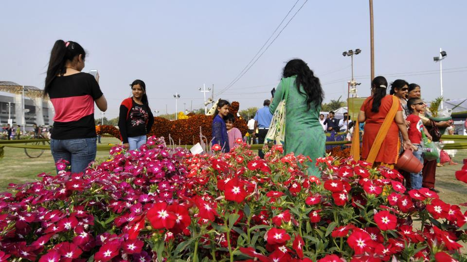 Greater Noida authority,flower show,City park