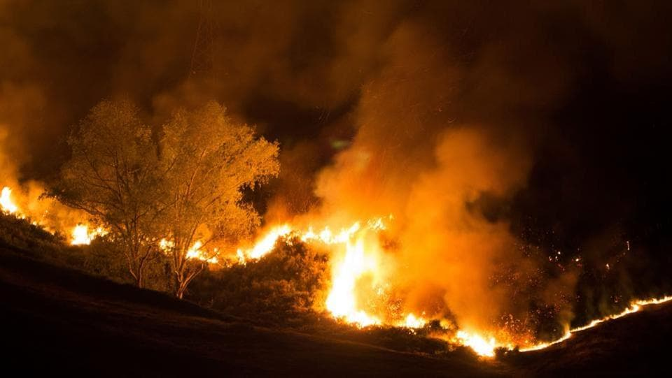 Flames from the wildfire leap to the sky. Wildfires of such ferocity are rare in New Zealand, where regular rainfall usually prevents them reaching the intensity seen in places like Australia and the US west coast. (Oliver WATSON / AFP)