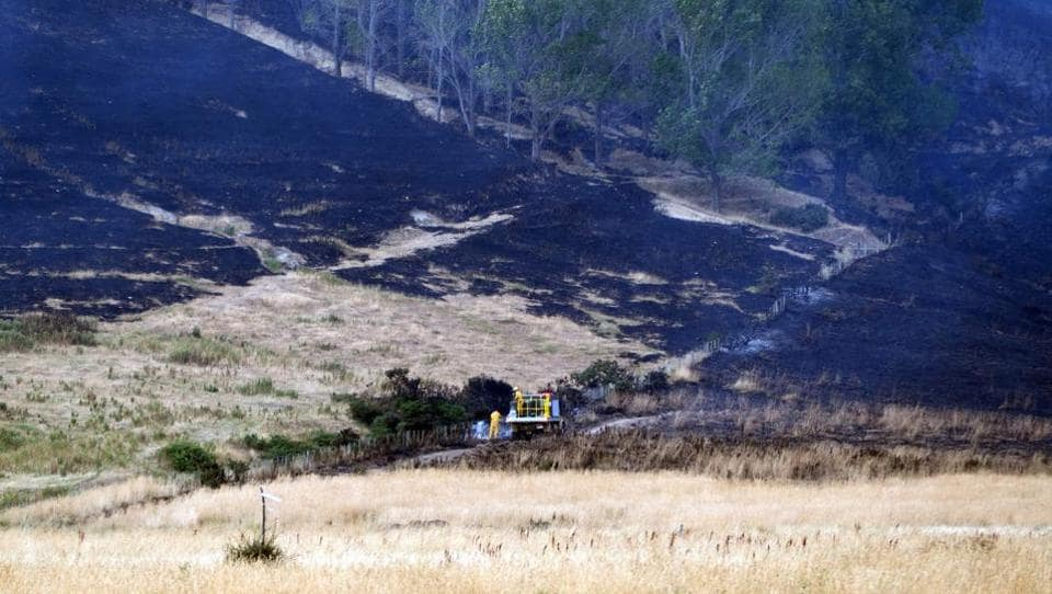 Firefighters examining an area burnt by a wildfire on Worsleys Road in Christchurch. The emergency has so far claimed one life, when a helicopter that was dumping water on the flames crashed on Tuesday and killed pilot Steve Askin, a decorated special forces veteran. (Oliver WATSON / AFP)