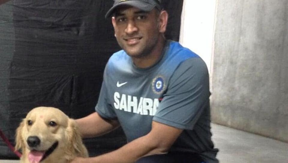 Mahendra Singh Dhoni  has often stated that he is 'an absolute pet-lover'  and he has showcased his love for dogs on his official Instagram account.