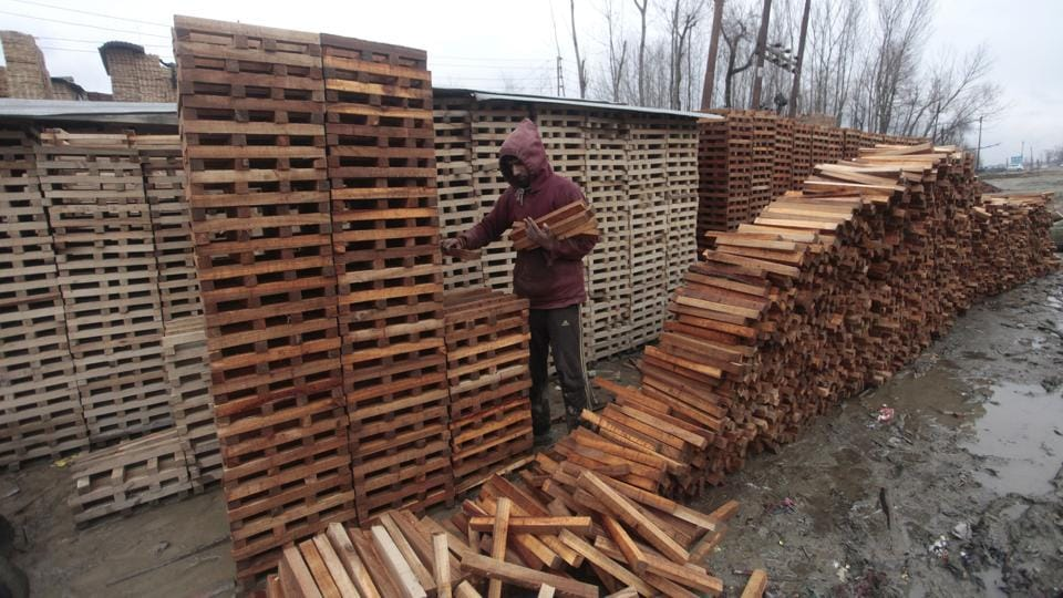 A worker counts stacks of willow cleft cut from trees used in making cricket bats. (Waseem Andrabi  / HT Photo)