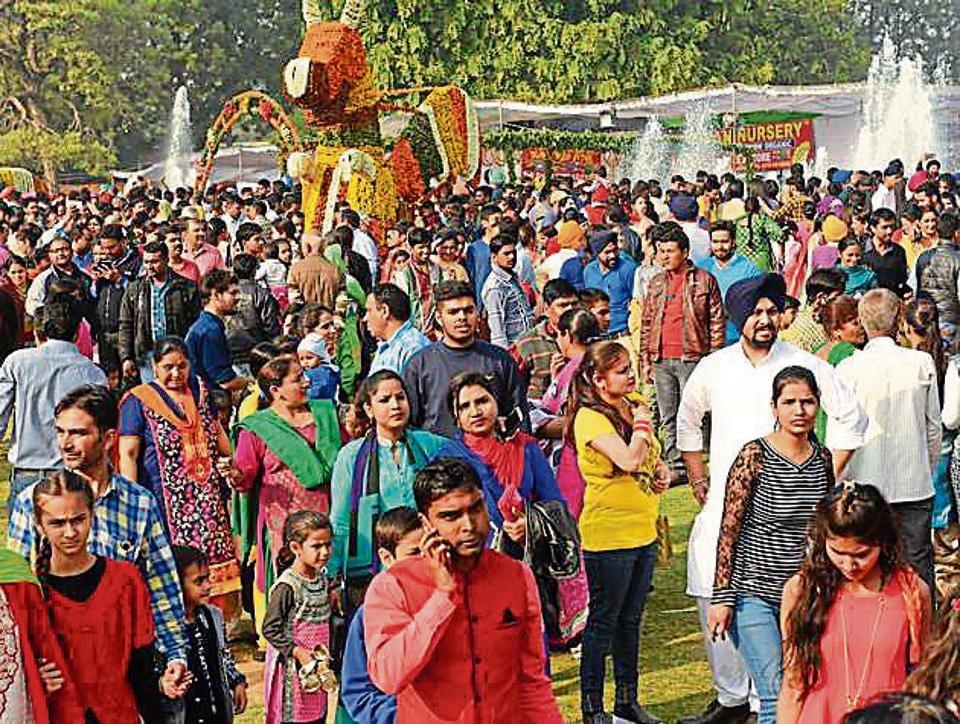 Rose Garden,Rose festival,Chandigarh administration