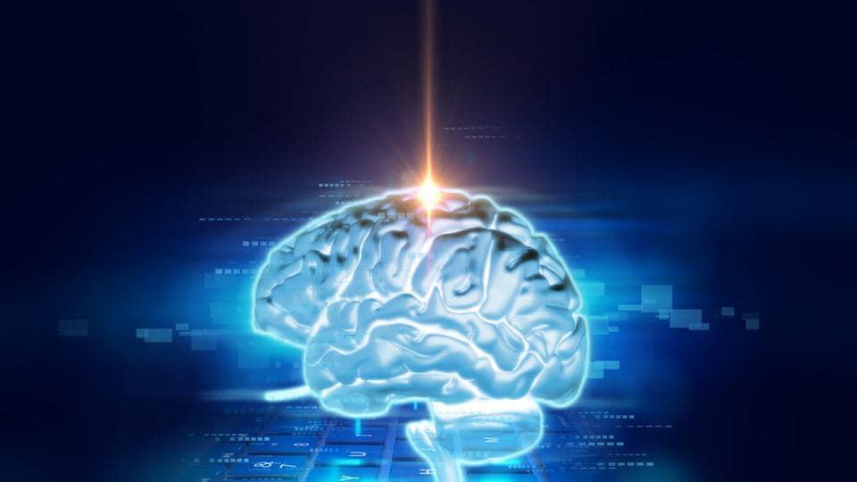 Human brain,fructose,sugar