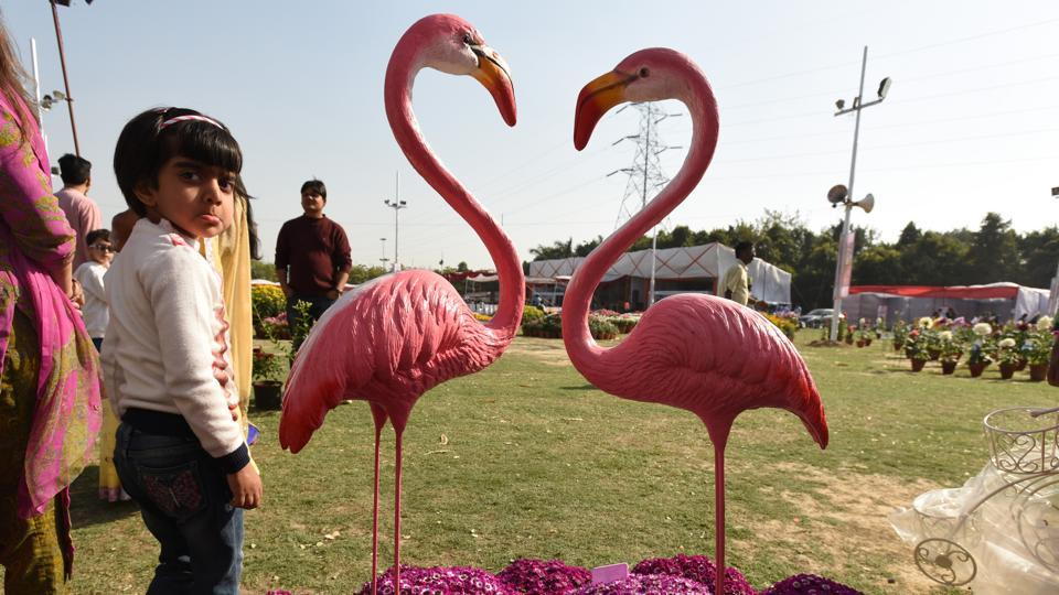 Visitors at the 31st annual flower show in Noida Stadium, Sector 21A, on Friday.