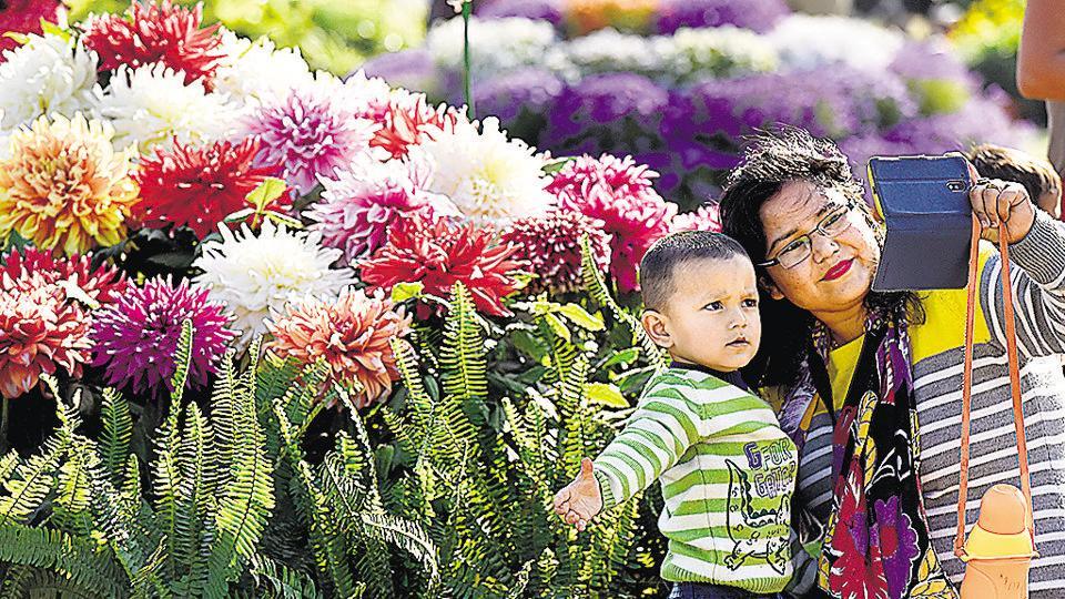 Noida,flower show,Noida authority