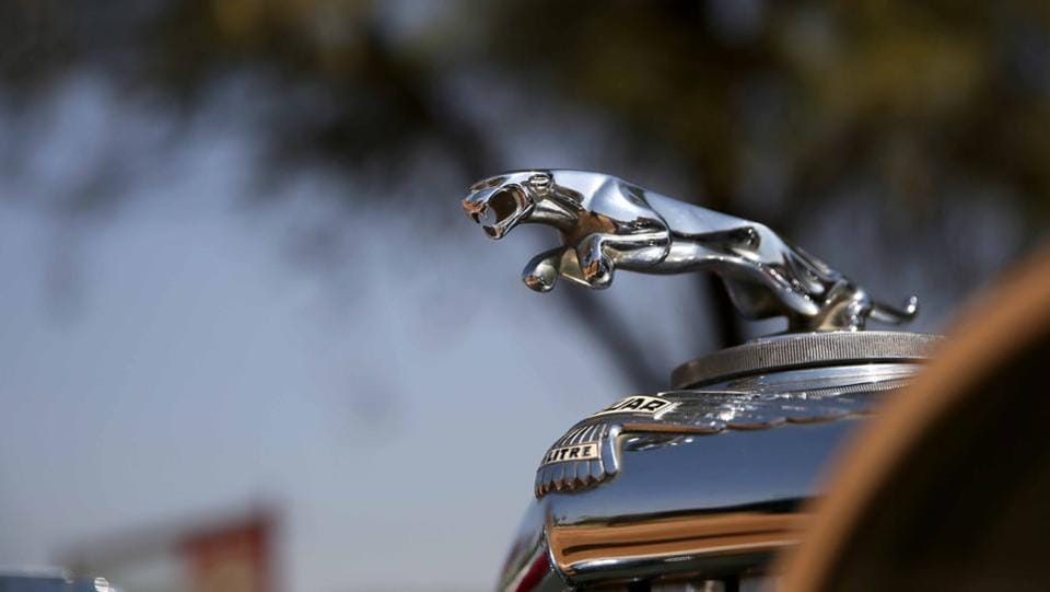 Leaping Jaguar car mascot  mounted on a classic vintage car during the19th Vintage & Classic Car Rally in Jaipur.  (Himanshu Vyas\ HT Photo)