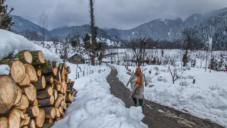 A woman walks past a pile of logs in Gauran village, Kokernag District of Kashmir. (Prasun Mitra)