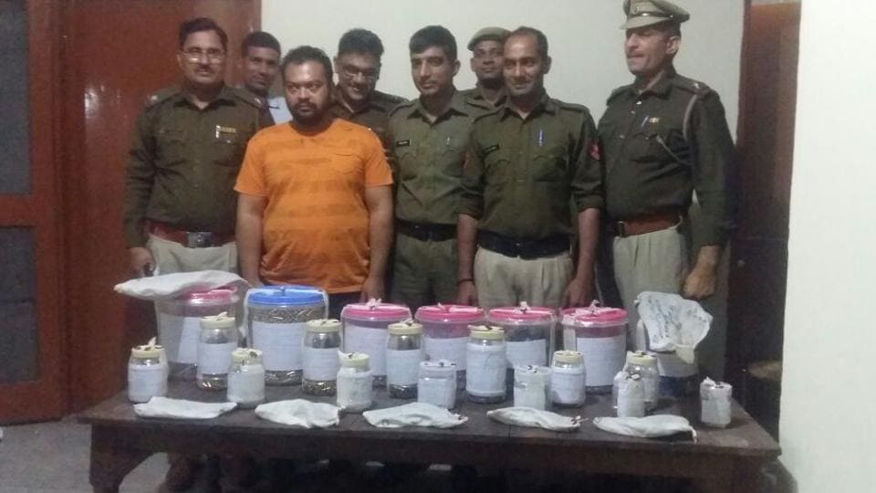 The arms and ammunition recovered from the room fake arms licence case accused Manish's domestic help, who lives in a rented room in Gurgaon village.