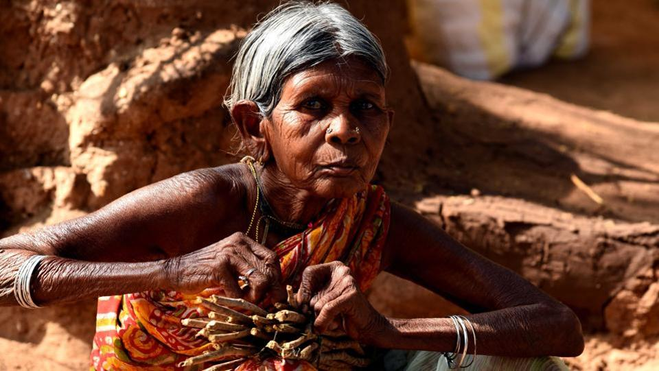 An old tribal women sells tooth sticks in the Lanjigarh weekly haat (market) where the locals do most of their shopping. (Arabinda Mohapatra)