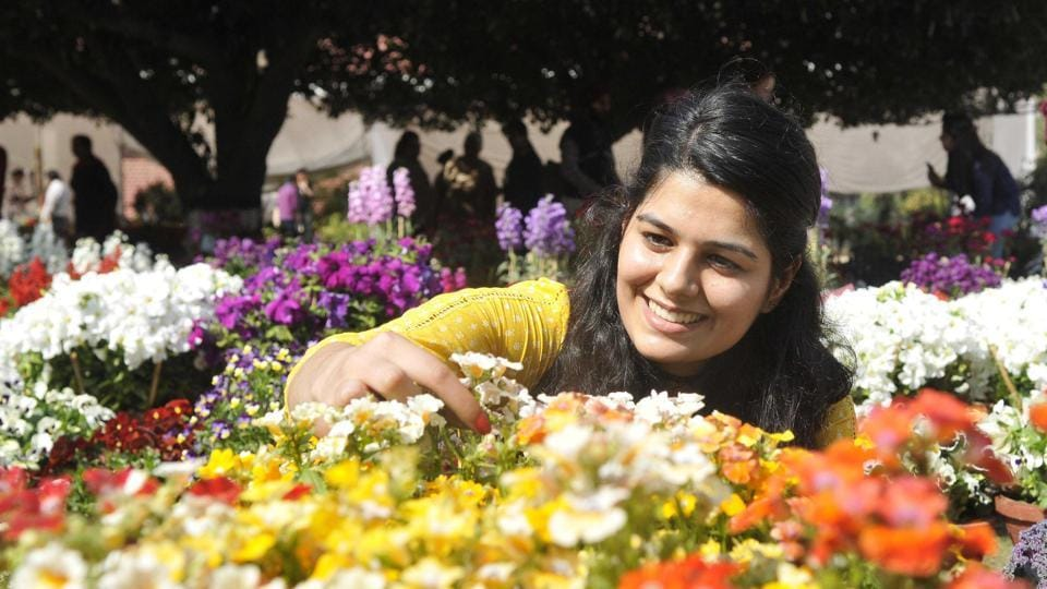 A girl admiring the flowers during the flower show at PAU in Ludhiana on Thursday.  (Gurminder Singh/HT Photo)