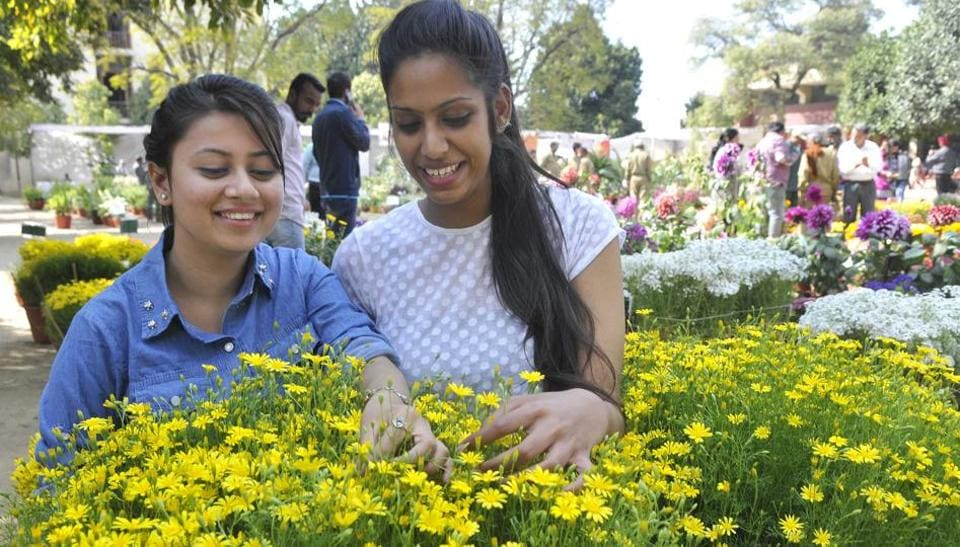 Visitors at the 21st annual flower show at Punjab Agricultural University, Ludhiana, on Wednesday.  (Gurminder Singh/HT Photo)